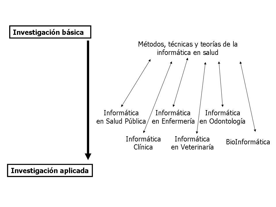 Disciplinas Informática Médica